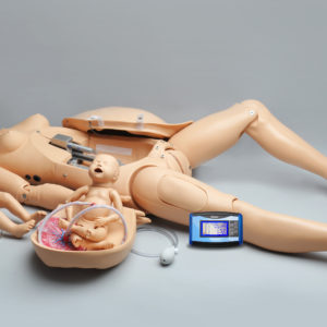 Noelle Maternal and Neonatal Birthing Simulator