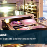 Webinar on Demand: Live-Cell Analysis of Cell Subsets and Heterogeneity