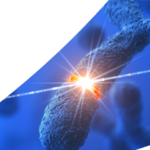 Asuragen announce the launch of AmplideX PCR/CE DMPK Kit for myotonic dystrophy