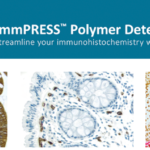 ImmPRESS Polymer Detection Reagents
