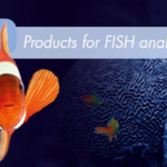 Looking for FISH probes for Haematology and Sarcoma indications?