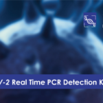 CerTest VIASURE SARS-CoV-2 Real Time PCR Detection Kit