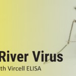 Vircell Ross River Virus (RRV) IgG and IgM testing solution