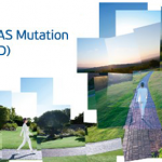 New Idylla NRAS Mutation Test (CE-IVD)