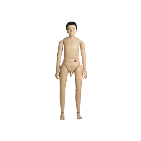 Superior Male Bedford Doll – AR2000 1